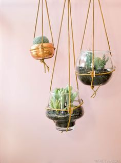 Hey guys!! I have a SUPER fun and simple tutorial ! Leather Strap Planters for my budding cactus garden (I have a serious problem with cute cacti). To make these planters you will need: A vessel,...
