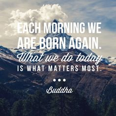 Inspiring words from the Buddha on this delightful Tuesday afternoon :)