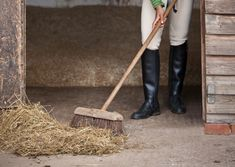 13 Steps to Properly Clean a Horse Stall
