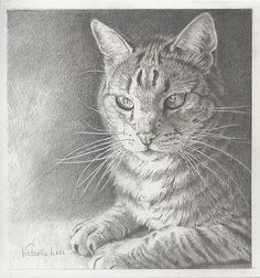 Revisiting to admire and promote this beautiful drawing, Victoria!