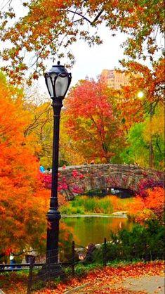Autumn in Central Park tjn