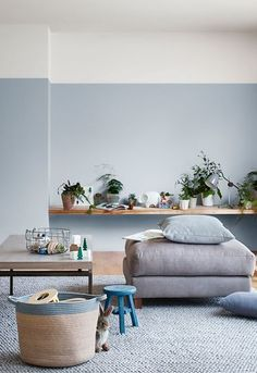 Elegant living room wall colour ideas matching with furniture 00034 ~ Home Decoration Inspiration Home Wall Colour, Room Wall Colors, Bedroom Colors, Blue Painted Walls, Blue Walls, Cozy Bedroom, Bedroom Decor, Interior Design Living Room, Living Room Decor