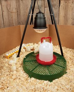 Make your own brooder heat lamp stand out of PVC. | Chicken plans ...