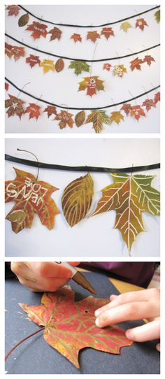 How to Make A Beautiful Fall Leaf Garland is part of Thanksgiving crafts Leaf Garland - How to make a beautiful fall leaf garland from pressed autumn leaves & metallic marker doodles Write what you are thankful for as a Thanksgiving variation Autumn Leaves Craft, Fall Leaf Garland, Autumn Crafts, Fall Crafts For Kids, Nature Crafts, Thanksgiving Crafts, Holiday Crafts, Art For Kids, Fall Leaves