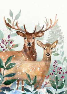 Woodland Deers In Watercolor Christmas Invitation Christmas by JunkyDotCom - Warm woodland Christmas hand drawn watercolor illustration of two deers standing in the woods. Christmas Canvas, Christmas Poster, Christmas Deer, Silver Christmas Decorations, Christmas Animals, Woodland Christmas, Christmas Crafts, Holiday Decor, Watercolor Christmas Cards