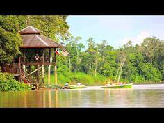 Wanderstories: Eco-Tour in Sabah, Malaysia - http://malaysiamegatravel.com/wanderstories-eco-tour-in-sabah-malaysia/