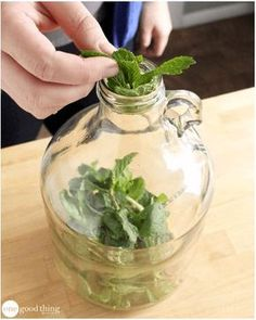 How To Make A Scented Vinegar Fabric Softener Rinse - Home Cleaning Diy Home Cleaning, Homemade Cleaning Products, Natural Cleaning Products, Cleaning Hacks, Vinegar Fabric Softener, Vinegar In Laundry, Paint Colors For Living Room, Diy Crafts To Sell, Fun To Be One