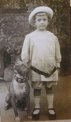 """100 Vintage Pictures Of When Pit Bulls Were America's """"Nanny"""" Dog- The Country's 7th Most Popular Breed And Our National Symbol."""