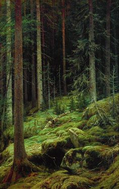 'Thicket' oil painting by Ivan Shishkin, 1881 Tree Forest, Dark Forest, Magical Forest, Landscape Art, Landscape Paintings, Russian Landscape, Wow Art, Norman Rockwell, Woodland
