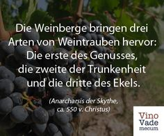 Blueberry, Facebook, Fruit, Food, Cry Quotes, Vine Yard, Berry, Essen, Meals