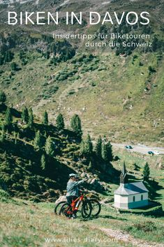 Grindelwald, Mountains, Bergen, Lilies, Nature, Movie Posters, Travel, Outdoor, Swiss Alps