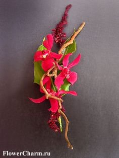 Fabulous contemporary red orchid boutonniere by http://www.flowercharm.ru/services/wedding/butonerka.html