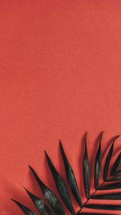 40 Super Cute Flowers and Fruit Wallpaper 40 Super Cute Flowers and Fruit Wallpaper . - 40 super cute flowers and fruits wallpapers 40 super cute flowers and fruits wallpapers, This image - Wallpaper Tumblr Lockscreen, Disney Phone Wallpaper, Iphone Background Wallpaper, Cellphone Wallpaper, Aesthetic Iphone Wallpaper, Aesthetic Wallpapers, Wallpaper Quotes, Galaxy Wallpaper, Wallpaper Iphone Vintage
