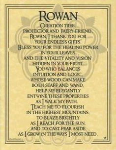 Rowan...people wonder why we chose that as A's middle name