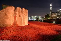 """Click through for incredible photos of Armistice Day ceremonies done right: """"A kingdom united in Remembrance: Queen and Kate defy terror threat to lead the country on 100th anniversary of start of First World War as poignant tributes are held throughout Britain"""" -- Shown: """"888,246 poppies at the Tower of London – one for each British and colonial death during the war – have been sold at £25 each, with part of the estimated £15million proceeds shared between six service charities"""""""