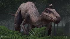 Jurassic Park 1993, Jurassic Park World, Kayaking With Kids, Dinosaur Cards, Jurassic World Dinosaurs, Reptiles, Prehistoric, Camel, Camping