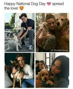 Riverdale Funny, Bughead Riverdale, Riverdale Memes, Happy National Dog Day, Cool Pictures, Funny Pictures, Riverdale Cole Sprouse, River Dale, The Secret