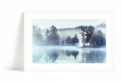 Forest omgitt av tåke Fine Art