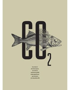 103 Best Environmental Posters Images Environmental Posters