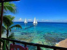 Cozumel Island, Outdoor Decor, Home, Ad Home, Homes, Haus, Houses