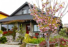This cherry blossom tree, red door and matching outdoor furniture gives a minimalist, coherent appearance.