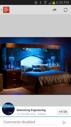 Funny pictures about The Aquarium Bed. Oh, and cool pics about The Aquarium Bed. Also, The Aquarium Bed photos. Awesome Bedrooms, Cool Rooms, Beautiful Bedrooms, Small Rooms, Small Bathrooms, Coolest Bedrooms, Bathrooms Decor, Fish Tank Bed, Aquarium Original