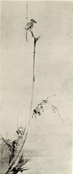 Shrike perched on a withered branch. By Miyamoto Musashi (a famous duelist and master of the 2 sword technique). Zen Painting, Japanese Painting, Chinese Painting, Chinese Art, Chinese Brush, Art Zen, Illustrations, Illustration Art, Miyamoto Musashi