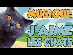 YOUTUNES - J'AIME LES CHATS (MUSIQUE) - YouTube