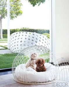 Lena Dunham bought a similar cage for her dog after reading this issue of Elle Decor.