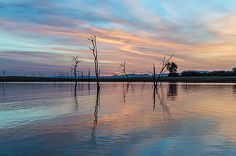 Pastel Sunrise by Dawn Broom Marina Beach, First Art, Framed Prints, Canvas Prints, Art Prints, Amazing Nature, Fine Art America, Dawn, House Art