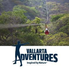 Explore the Jungle Canopy on Zip Lines. Find Vallarta Adventures on WiPApps.com and get out there. #BanderasBay #PuertoVallarta #RivieraNayarit #WiPApps #Canopy #Ziplines