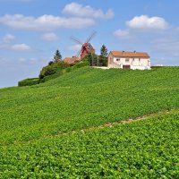 Recettes région Champagne-Ardenne - Cuisine et Vins de France