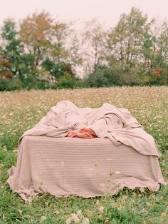 Bed in a field - elizabeth messina photography, classic wedding inspiration, film photography, Family Photo Sessions, Family Photos, Classic Wedding Inspiration, Elizabeth Messina, Ethereal Wedding, Strong Love, Love Is Patient, New Adventures, Blue Moon