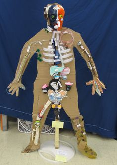 2013 Human Body Project