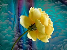 Tapestries Series - Soft Gold Photo Art, Tapestry, Gallery, Plants, Gold, Pictures, Inspirational, Digital, Flowers