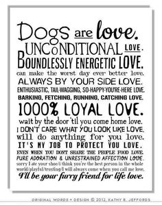 Dogs are love, for sure!