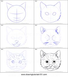 How to Draw a Cat Face step by step printable drawing sheet to print. Learn How to Draw a Cat Face Draw Tutorial, Cat Drawing Tutorial, Animal Drawings, Art Drawings, Kitty Face Paint, Butterfly Sketch, Drawing Sheet, Easy Drawings For Kids, Drawing Activities