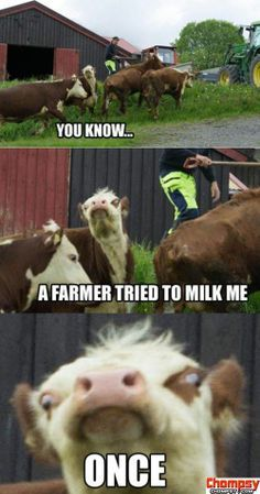 Laughed way too hard at this