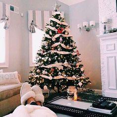 Christmas season 365