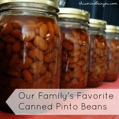 Canned Pinto Beans by Let This Mind Be in You #Amazmerizing