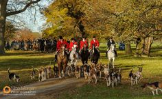 The Oakley and Fitzwilliam Hunts
