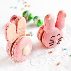 SO adorable!! Bunny macarons!