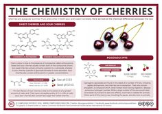 It's cherry season in the UK, and the cherry trees are currently heaving under the weight of both sweet and sour cherries. Here we take a look at the chemical differences between the two, and…