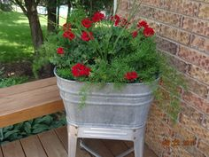 Geraniums and ferns in an old wash tub - Modern Container Flowers, Flower Planters, Container Plants, Container Gardening, Flower Pots, Succulent Containers, Vegetable Gardening, Garden Junk, Garden Yard Ideas