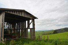 Kamahi Cottage, NZ