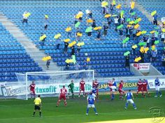 fans showing their players were they need to score to win!