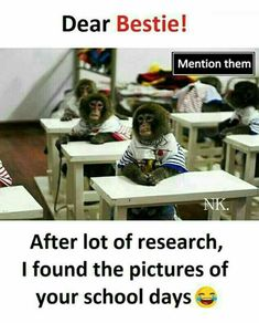 Funny dank dump of funny dank memes Latest Funny Jokes, Very Funny Memes, Funny School Memes, Some Funny Jokes, Funny Facts, Funny Stuff, Best Friend Quotes Funny, Cute Funny Quotes, Besties Quotes