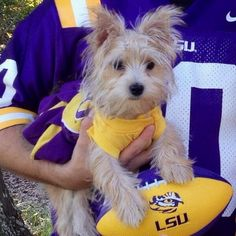 Bark if you root for #LSU!
