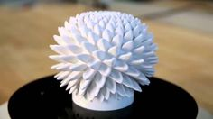 http://www.instructables.com/id/Blooming-Zoetrope-Sculptures/