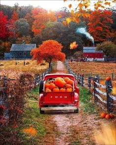 Beautiful Farm, Beautiful Pictures, Beautiful Places, Simply Beautiful, Sturbridge Village, Country Home Magazine, New England Fall, Pumpkin Picking, Changing Leaves